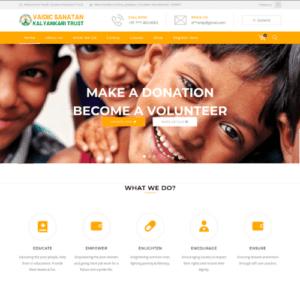 Fundraising Website Portfolio